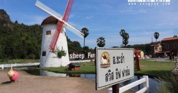 Swiss-Sheep-Farm-@cha-am
